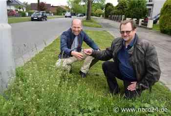 Bremerhaven: Gartenbauamt lässt Wildkräutern Raum - Nord24