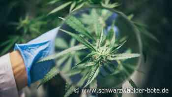 Freudenstadt - Drogenkonsum bestimmt sein Leben - Schwarzwälder Bote