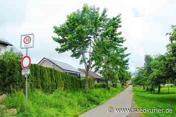 Blumberg: Diskussion über gefällte Bäume in Blumberg – Stadtverwaltung mauert - SÜDKURIER Online