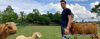 Arcore: tutti a vedere gli animali di Luca, che sogna la fattoria didattica - Il Cittadino di Monza e Brianza