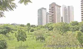 Lançamentos imobiliários na Capital e Nova Lima têm expansão de 90% - Diário do Comércio