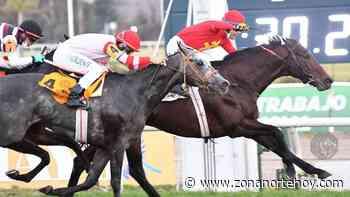 Hipódromo de San Isidro: Village King tocó el cielo, le ganó a Miriñaque y se llevó el Gran Premio 25 de Mayo - zonanortehoy.com