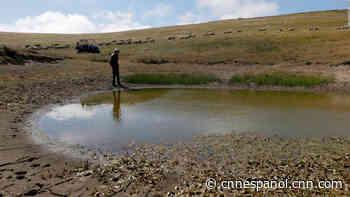 Casi 2 millones de residentes están bajo emergencia por escasez de agua en California - CNN