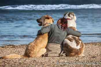 Animali in vacanza, torna il concorso fotografico della Lav Carmagnola - Il carmagnolese