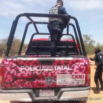 Detienen a 3 presuntos rateros en Guadalupe - Noticias - Express Zacatecas