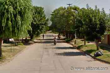 Podaba un árbol en barrio Guadalupe Oeste, cayó y murió - El Litoral