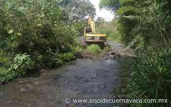 Lluvias solo han dejado árboles caídos en barrancas - El Sol de Cuernavaca