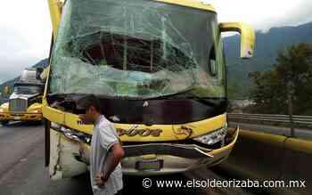 Chocan autobuses en curva de Nogales - El Sol de Orizaba