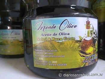 "Detectan otro aceite de oliva ""trucho"" elaborado en San Rafael - Diario San Rafael"