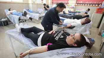 Las donaciones de sangre aumentan un 8% en Córdoba los primeros meses del 2021 - Diario Córdoba
