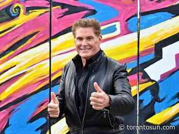 """VACCINE """"HERO"""": David Hasselhoff urges Germany to get jabbed - Toronto Sun"""