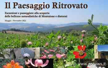Il Paesaggio ritrovato, il calendario 2021 delle escursioni a Montaione - gonews