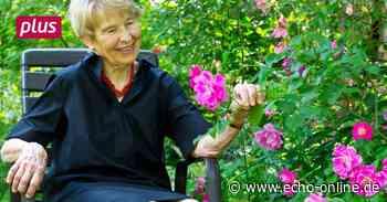Grüner Daumen: Ein untypischer Rosengarten in Roßdorf - Echo Online