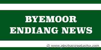 Tailgate market will continue in Byemoor - Pincher Creek Echo