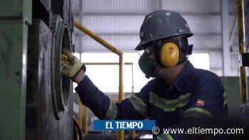 Aumentaría el desempleo en Santa Marta, señala Cámara de Comercio - El Tiempo