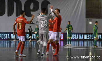 Nas meias-finais da Taça da Liga - Sport Lisboa e Benfica