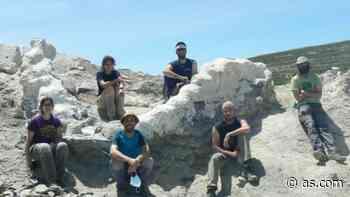 Hallan cinco metros de columna vertebral de un dinosaurio en Teruel - AS