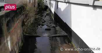 Als das Wasser in Heppenheim abgestellt wurde - Echo Online