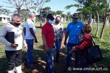 Santa Clara: Desarrollo local en pos de soberanía alimentaria y educación nutricional (+Audio) - Radio CMHW