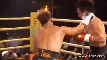 Austin McBroom Destroys Bryce Hall in Boxing Match - TMZ