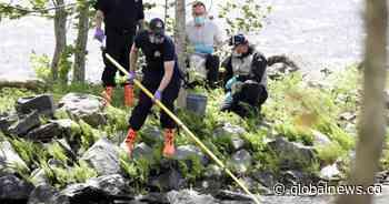 Nova Scotia veterinarian warns dog owners about toxic blue-green algae in lakes