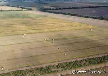Nonantola: domani sorteggio terreni Partecipanza riparto decennale - La Provincia - LaPressa.it - La Pressa