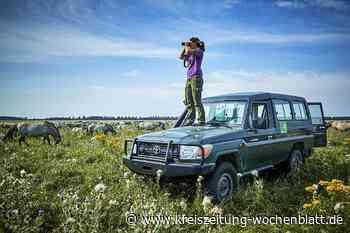 Reise: Flevoland, die jüngste Provinz der Niederlande, wurde aus dem Nichts geschaffen - Kreiszeitung Wochenblatt