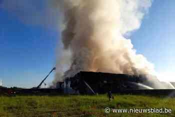 Vuur verwoest vleesverwerkingsbedrijf bij Gentse haven, bran... (Gent) - Het Nieuwsblad