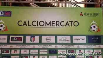 Gubbio, piacciono due golden boy scuola Atalanta - tuttocalcionews