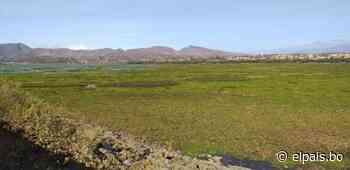 Por falta de fondos prevén para 2022 el dragado de San Jacinto - El País