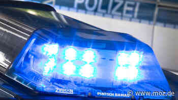 Polizei: Flüchtender Felgendieb fällt in Gartenteich in Oranienburg - moz.de