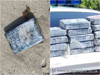 Cocaine worth $1.2m washes ashore at Florida Space Force Station