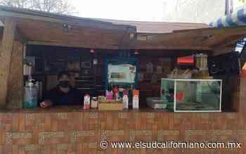 Caen ventas en puestos de café 80% en La Paz - El Sudcaliforniano