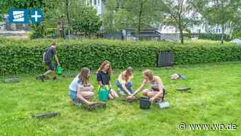 Firmlinge in Beckum pflegen Kriegsgräber - Westfalenpost