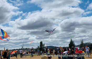 See how high your kite will fly at the first Coffs Harbour Kite Festival - News Of The Area