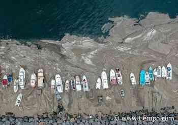"""Alarma por un """"moco gigante"""" que invade las playas de Turquía - Tiempo.com"""