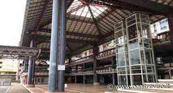 Conegliano: cineforum estivo al Biscione | Oggi Treviso | News | Il quotidiano con le notizie di Treviso e Provincia: Oggitreviso - Oggi Treviso