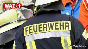 Feuerwehr Witten musste frühmorgens Waldbrand löschen - Westdeutsche Allgemeine Zeitung