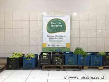 Conheça o Banco de Alimentos de Juazeiro do Norte e saiba como contribuir - Site Miséria