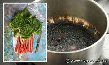 Cleaning: Mrs Hinch fans share rhubarb boiling hack to clean dirty pots and pans - Express