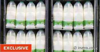Food shortages, fresh produce left to rot and prices to rise amid lorry driver 'crisis' - iNews