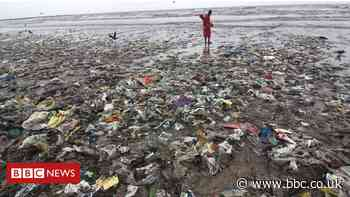 Plastic pollution: take-out food is littering the oceans - BBC News