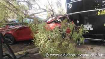 Comodoro Rivadavia: automovilista se estrelló contra un carro de comidas en el bulevar del Liceo Militar - El Diario Nuevo Dia