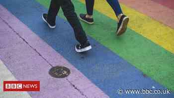Rainbow inclusivity pathway planned for Taunton
