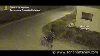 En General Pacheco, el COT detuvo a un hombre que circulaba en bicicleta con una planta de marihuana - zonanortehoy.com