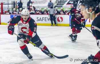 2020-21 WHL Season Review: Prince George Cougars - Prince Albert Daily Herald