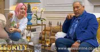 Sir Tom Jones' priceless reaction when he learns what a Prince Albert piercing is on Gogglebox - Wales Online
