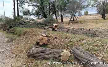 Ayuntamiento de Tlaxcala pide denunciar daños al ambiente - El Sol de Tlaxcala