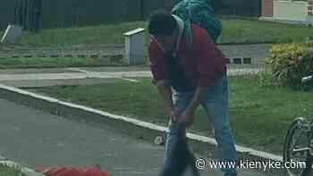 Nuevo caso de maltrato animal en Zipaquirá - KienyKe