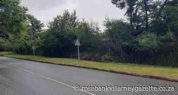 Help keep the Green Crew alive - Rosebank Killarney Gazette